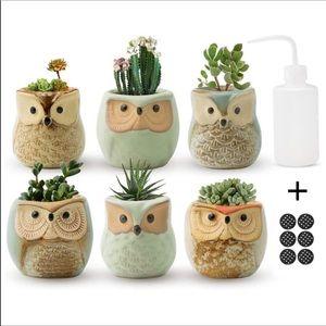 🎀NEW Owl Planters Set 6 pieces New🎀